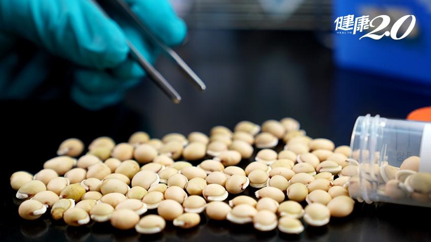 中研院證實:中藥白扁豆萃取蛋白 有效阻斷新冠病毒!