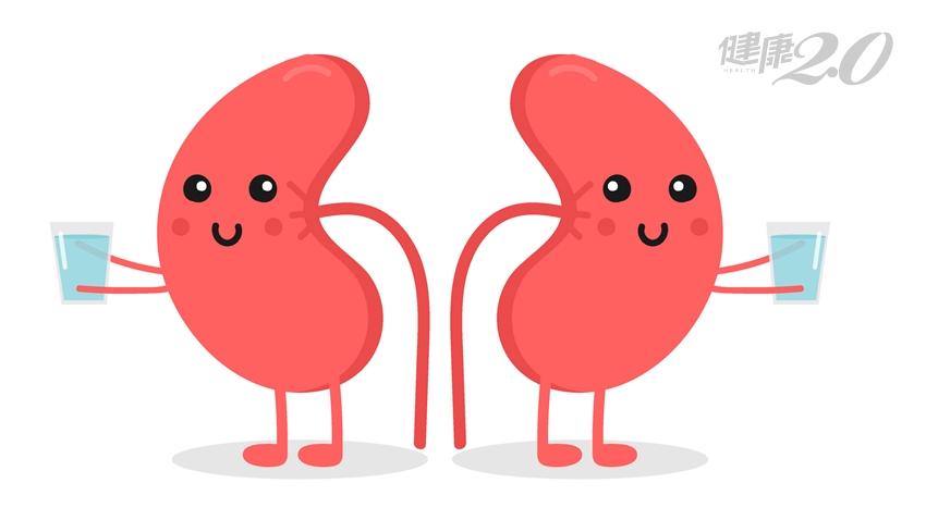 洗腎人口年增2000人!護腎飲食「3多3少」 不憋尿、不熬夜也很重要