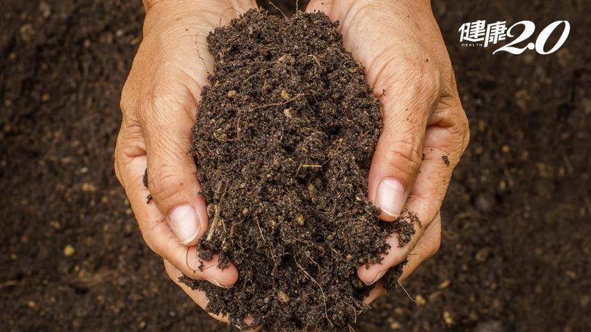 英、美、台急呼籲:收到不明土壤快通報!一包泥土究竟會帶來什麼危機?