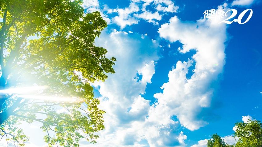 小丘疹、濕疹代表體內濕氣重!立秋養生三要點,「陽光下健走」排濕最快最舒服