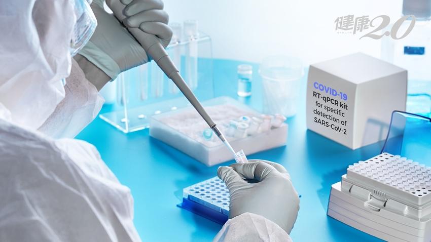 新冠肺炎篩檢檢測什麼?RT-PCR、IgM、IgG 搞清楚3種重要指標