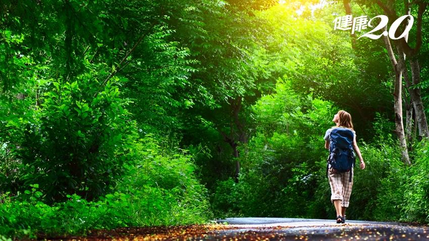 假日快到森林散步!啟動「抗老回春超級荷爾蒙」 保護血管心臟、預防心血管疾病