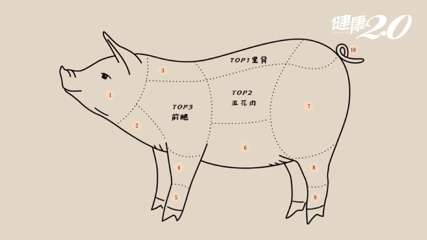 豬身上最好的一塊肉是哪裡?里肌肉、五花肉怎麼煮最好吃?