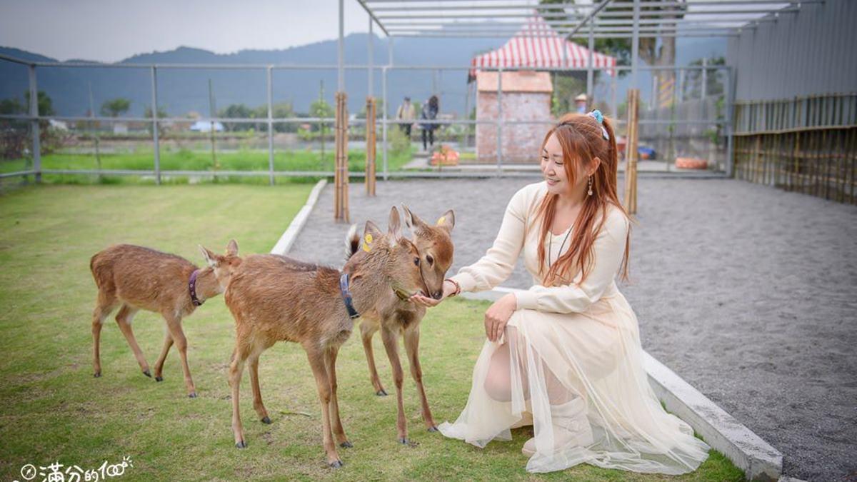 親子同遊必看!宜蘭有機農場體驗10種DIY,還能餵超萌小鹿