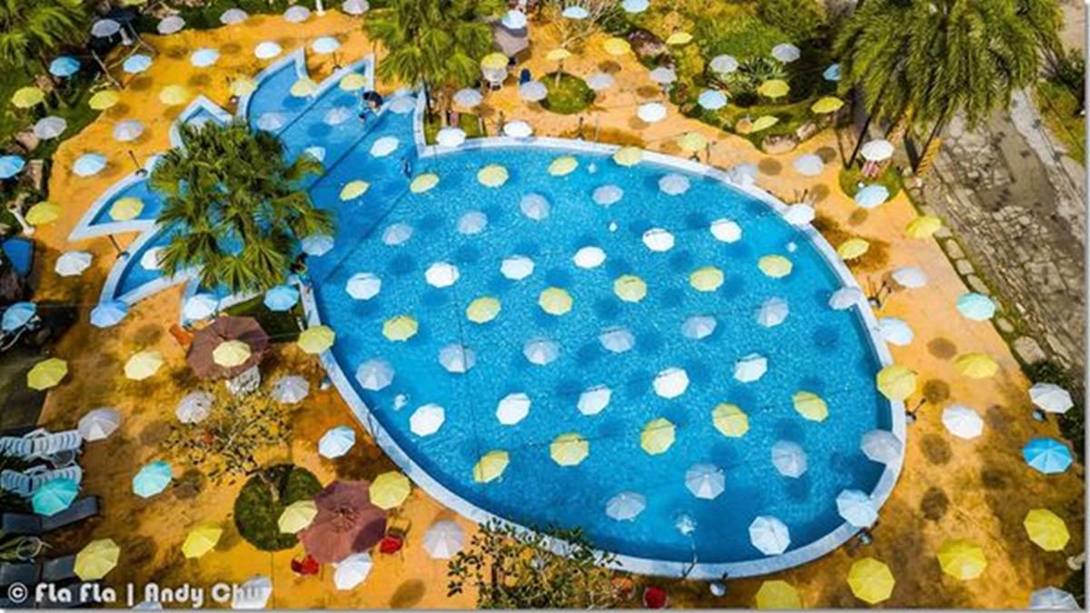 快跳進「大鳳梨」游泳!宜蘭豪華營地免搭帳篷就能住,還有瀑布造景超美拍