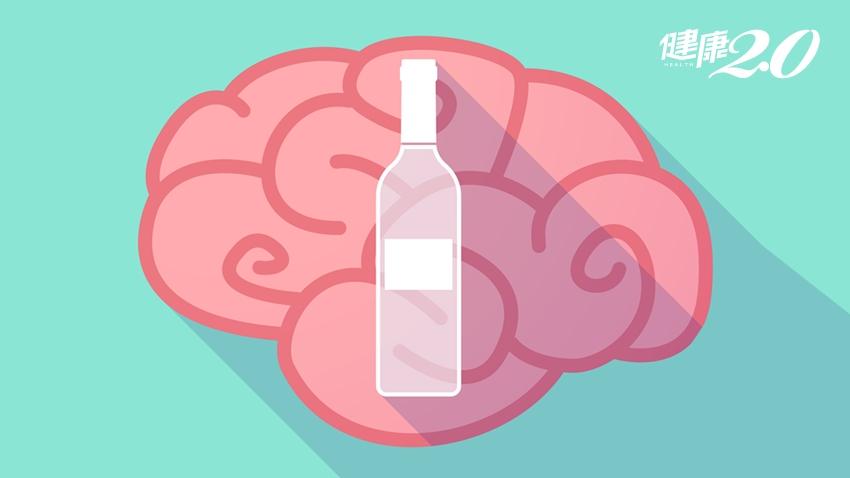 喝酒預防心血管疾病?醫學界已不建議!看看酒精如何傷害你的大腦
