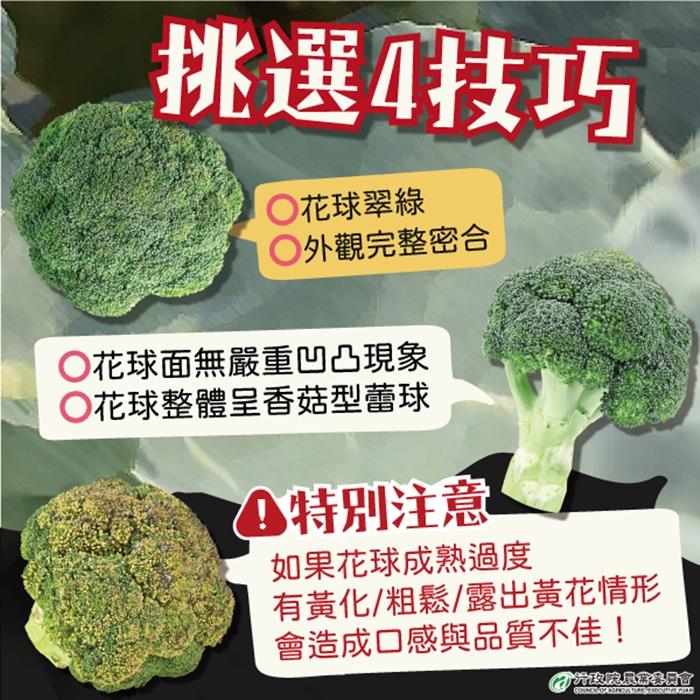 別搞錯!青花菜不是花椰菜!花球變黃能吃嗎?專家解析營養防2種癌