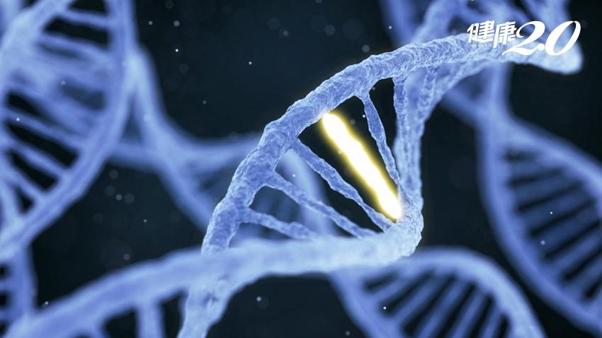 這2個基因突變了,讓你得乳癌、卵巢癌風險高5倍!如何提早發現變異?