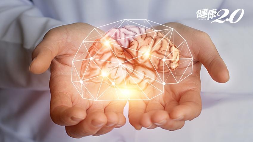「腦霧」不處理,失眠、肥胖、發炎、失智找上你!6件事導正大腦失衡