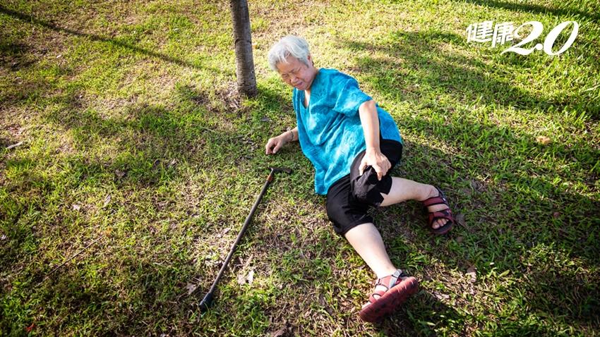國衛院解開肌肉衰老致命之謎!1招預防肌少症、衰弱症老人跌倒失能