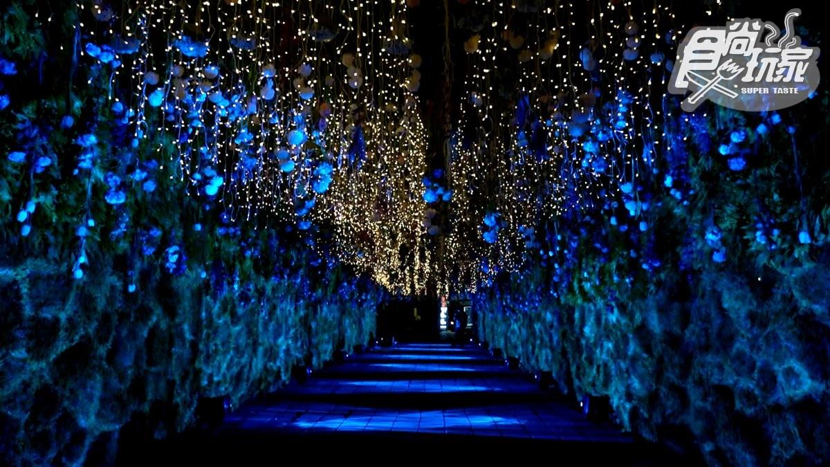 新北耶誕衝府中!「10米高魔豆+絕美花漾時光隧道」必拍,9座打卡點蒐一波