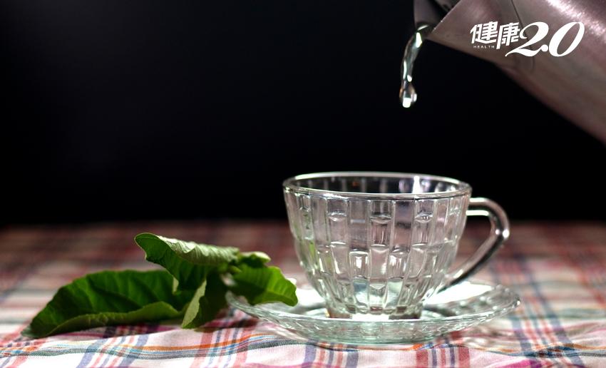 一天一片保肝防癌?南非葉泡茶喝小心洗腎!它的真正用途讓人驚訝