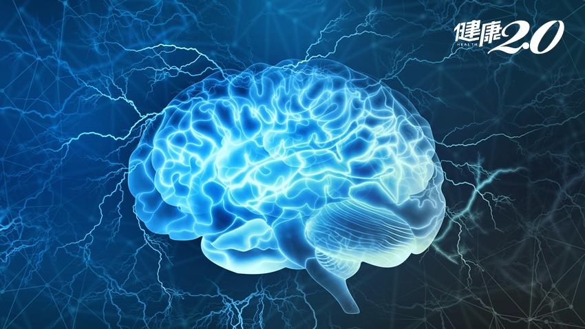 不要再說「老了,記不住」!讓老腦更新的方法很簡單:玩遊訓練大腦 但「數獨」、「填字」不算
