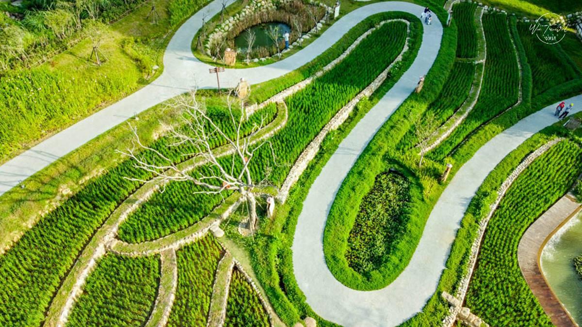 2021美拍清單!全台18處免費新打卡點:「梯田」公園、陸地版藍眼淚、亞洲最長旋轉橋