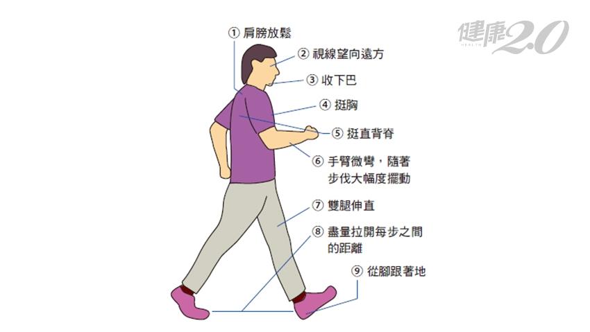 不想跑步?走路也能顧健康!一張圖了解「正確快走姿勢」