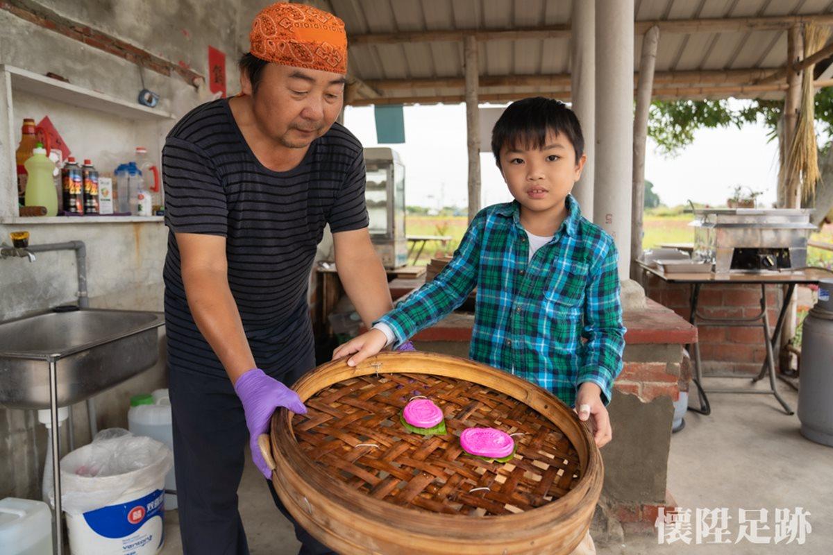 網美衝了!台南祕境美拍波斯菊金黃花海,還能DIY紅龜粿、吃鹽焗蛋