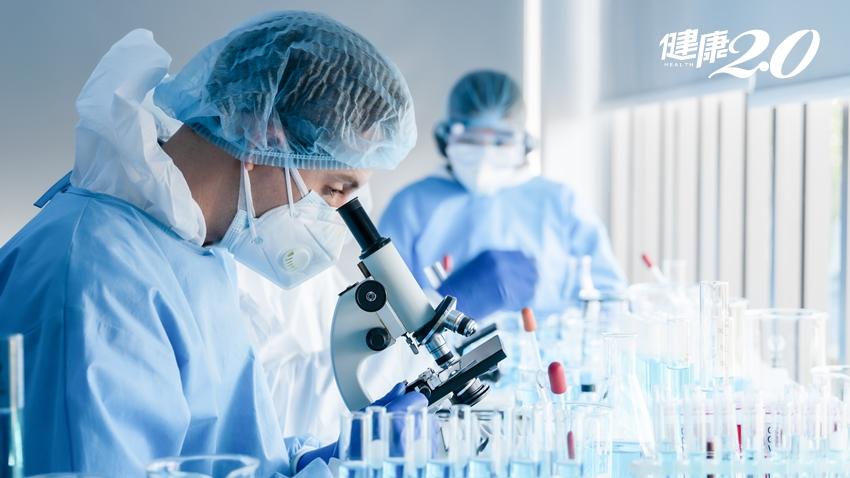 抗疫新發現!中醫大研究:「單寧酸」具有雙重作用可抑制新冠病毒