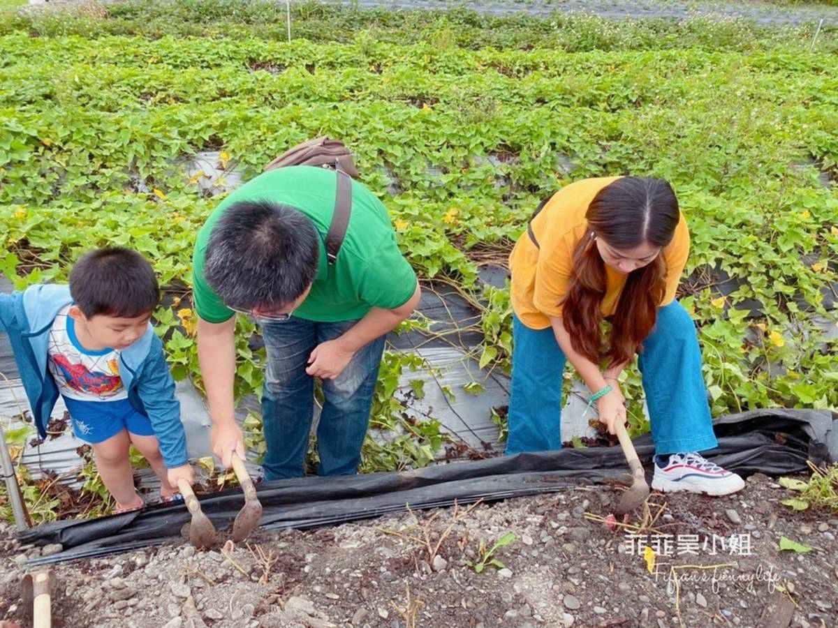 小朋友瘋了!宜蘭親子農場體驗挖地瓜、餵動物,還能吃有機蔬果餐、住特色涵管屋