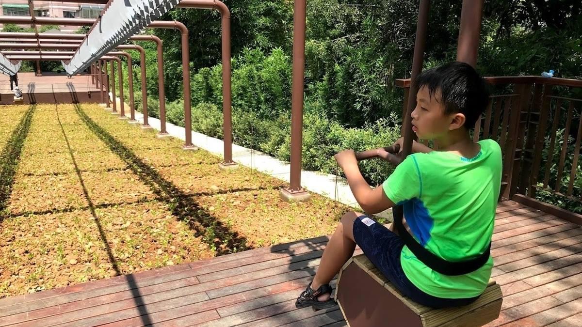 爸媽快收!桃園梯田公園全齡遊戲設施大朋友也能玩,先衝超刺激松鼠嬉戲溜索