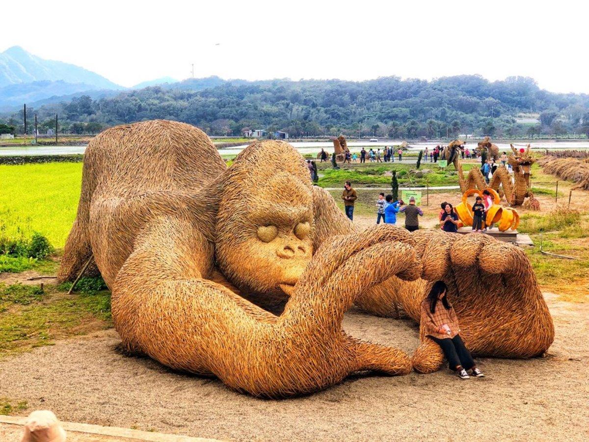 大型動物園來了!花蓮「富里稻草藝術節」正式登場,20組作品先拍龍貓車站、暴龍、企鵝