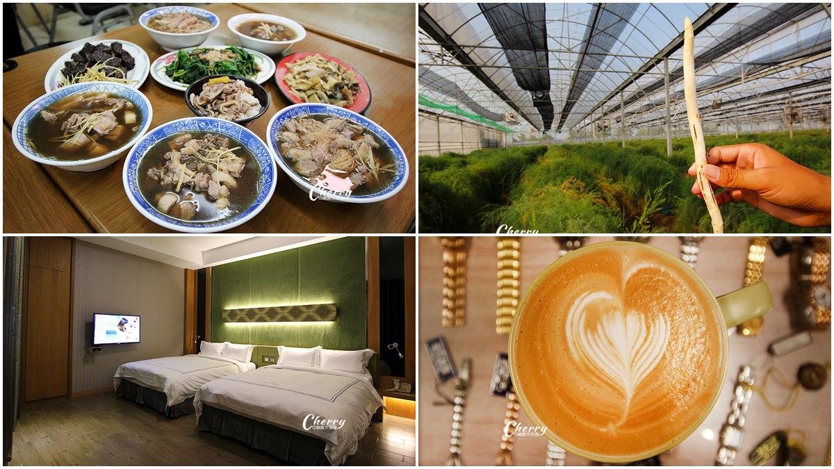 雲林土庫1日遊8亮點:60年鴨肉麵線、有機農場挖蘆筍、70年鐘錶咖啡店
