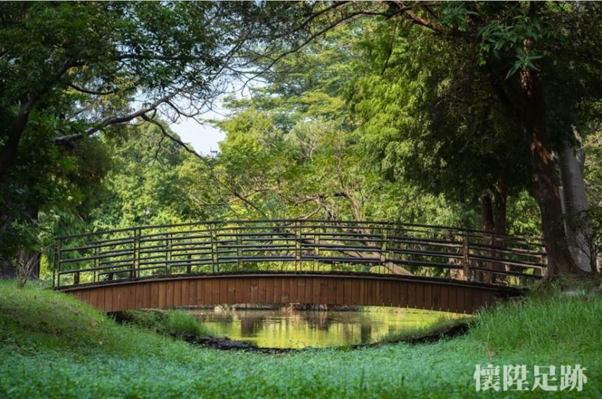 台版紐約中央公園!市區洗森林浴,打卡浪漫夢湖、夫妻樹、荷花池畔拱橋