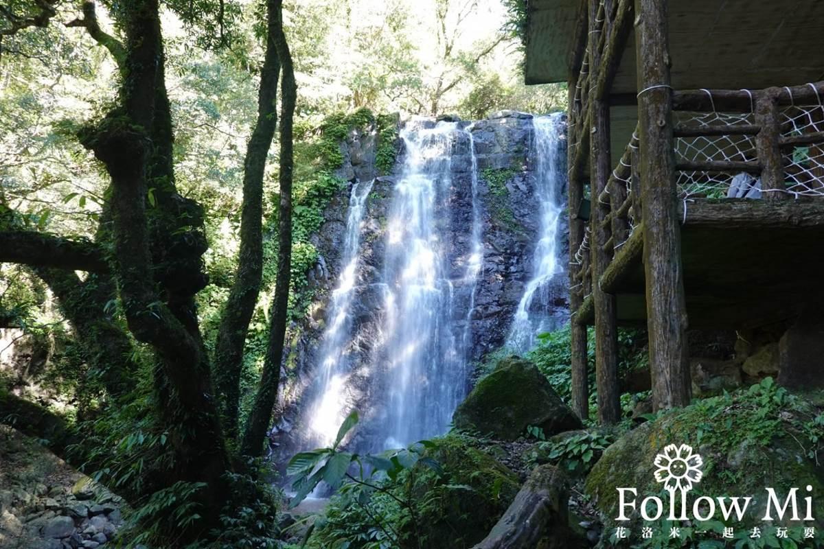 大口吸芬多精!三峽森林遊樂園區能賞瀑布、看鳥明星,還有3大室內館區玩不膩