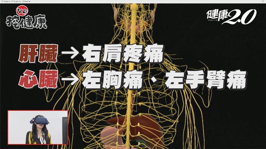 右肩疼痛竟是肝癌警訊!「沉默殺手」肝癌年奪7千命 醫點名7大高風險族群