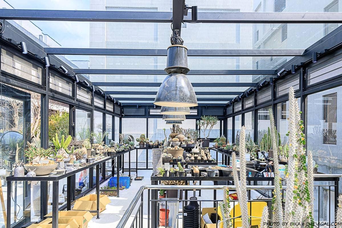 沙漠綠洲裡喝下午茶!溫室咖啡廳打卡「仙人掌」祕境,必點隱藏版冷萃、金箔千層