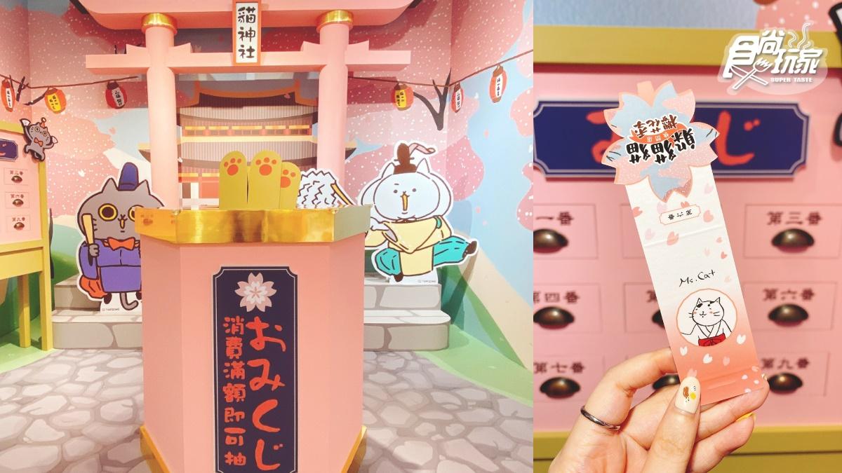 免費拍3大人氣喵!「躲貓貓櫻花季快閃店」4大浪漫打卡區、春櫻刨冰,百款周邊想收編