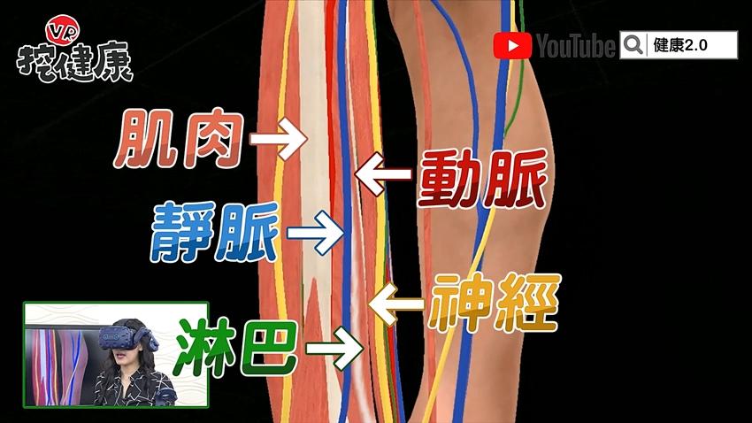 1種人下肢循環差!2招小腿運動 強壯「第二顆心臟」