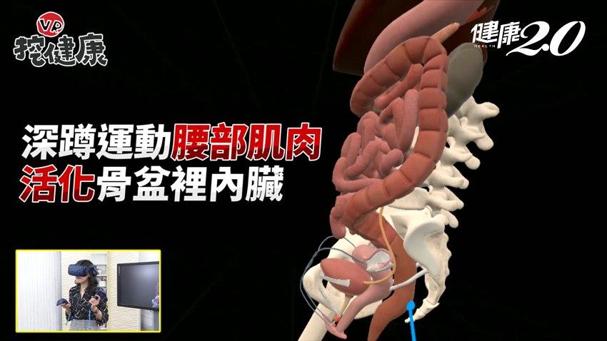 深蹲竟能防便祕?膝蓋不好可以蹲嗎?醫師破解深蹲迷思