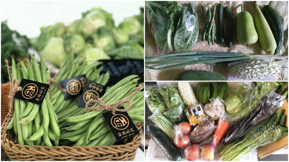 宜蘭人快收!5家在地「小農蔬菜箱」新鮮直送,有機蔬果、防疫乾貨一次備齊