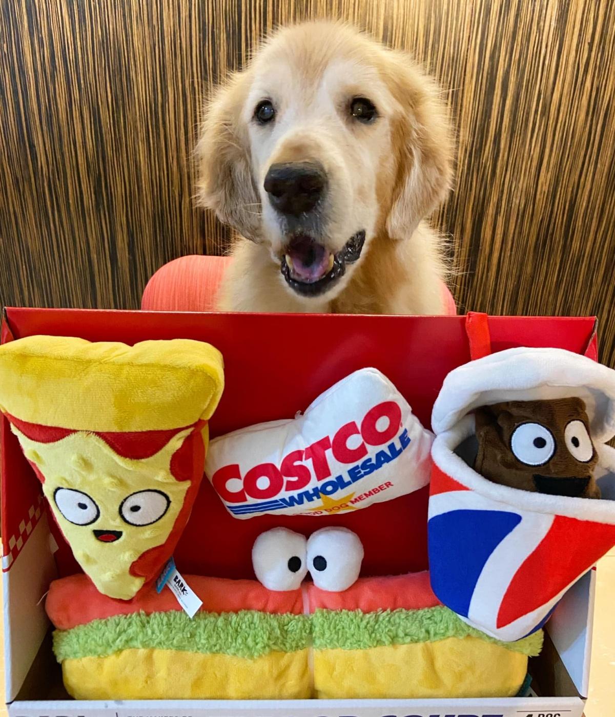 台灣也買得到!毛孩專屬「好市多餐飲部」玩具組,嗨啃「熱狗+披薩+可樂」