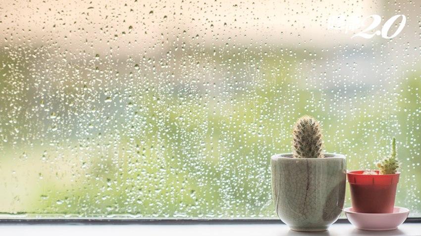 濕氣重一身病!警告:10個習慣會加重體內濕氣,立刻學「排濕」6大法