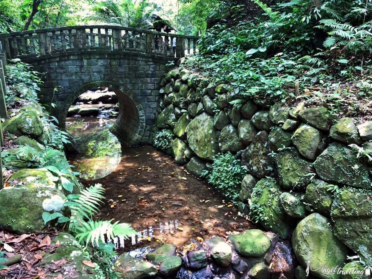 散心祕境先存好!隱身市區「親山步道」輕鬆好走不吃力,還能賞唯美復古拱橋、遠眺101