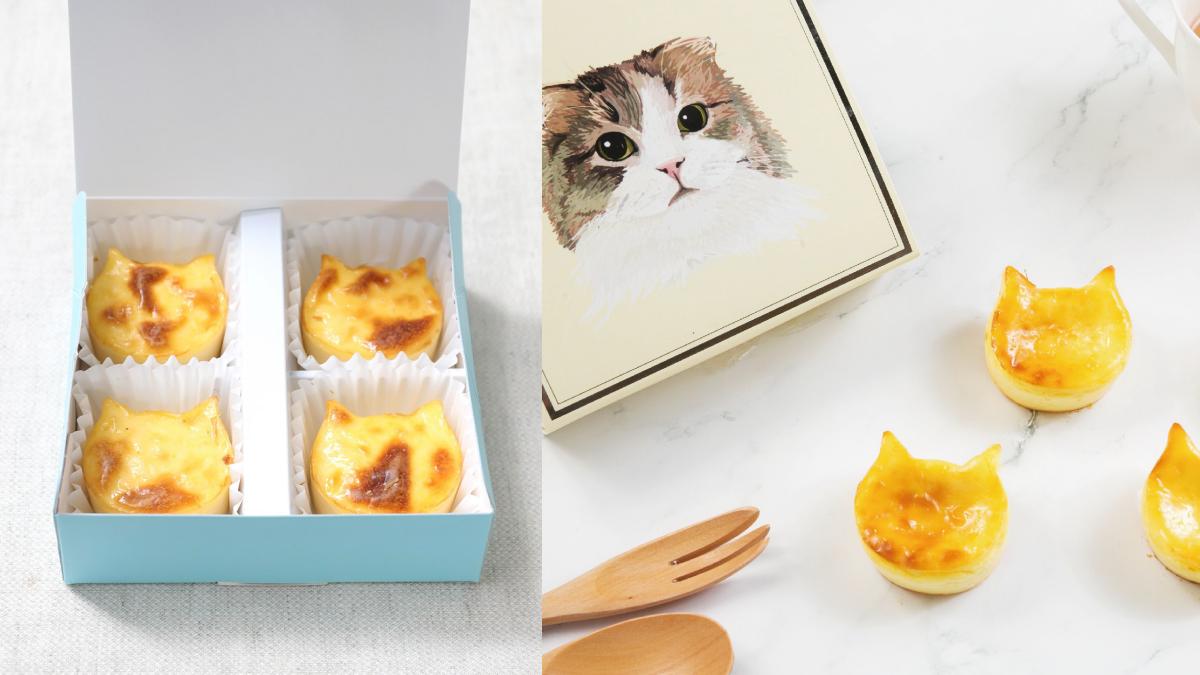 呼叫貓奴!全家開賣「貓貓起司蛋糕」波斯貓、折耳貓通通有,買再送超萌「貓貓保冷袋」