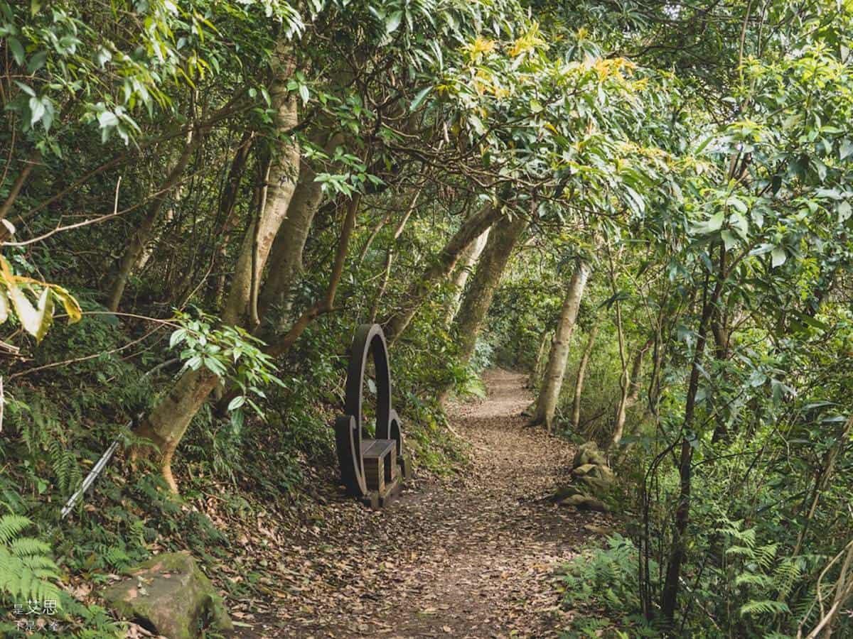 秒飛京都!美拍「竹蔭隧道」彷彿置身嵐山,「800公尺古道」散步走完只要40分