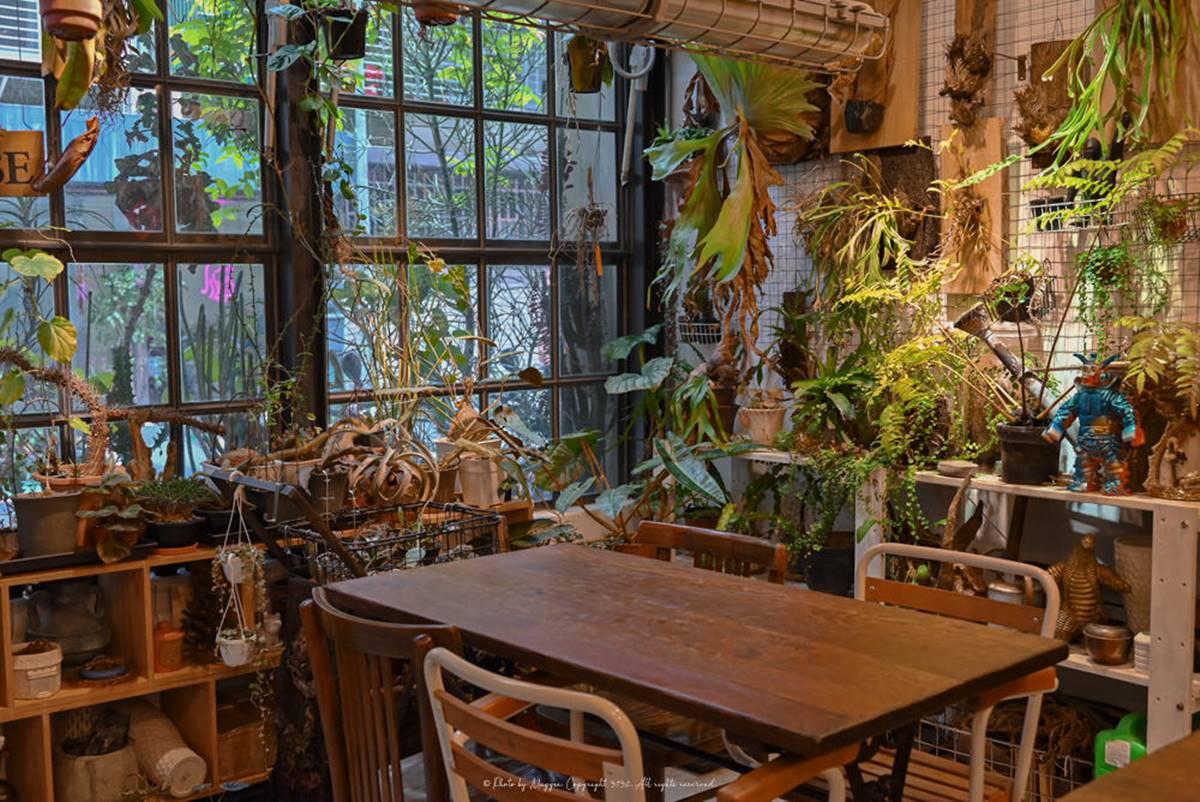 玩具迷必訪!「隱藏版咖啡廳」擺滿古董公仔超吸睛,甜點先嘗綿密「橙香檸檬生乳酪」