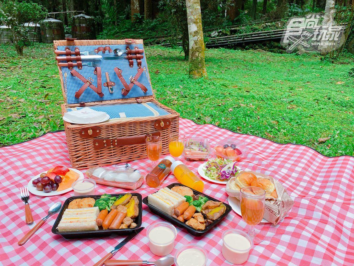 全台最美森林唯一飯店!打卡必拍無敵山景、松鼠一起野餐,每人每晚最低900元