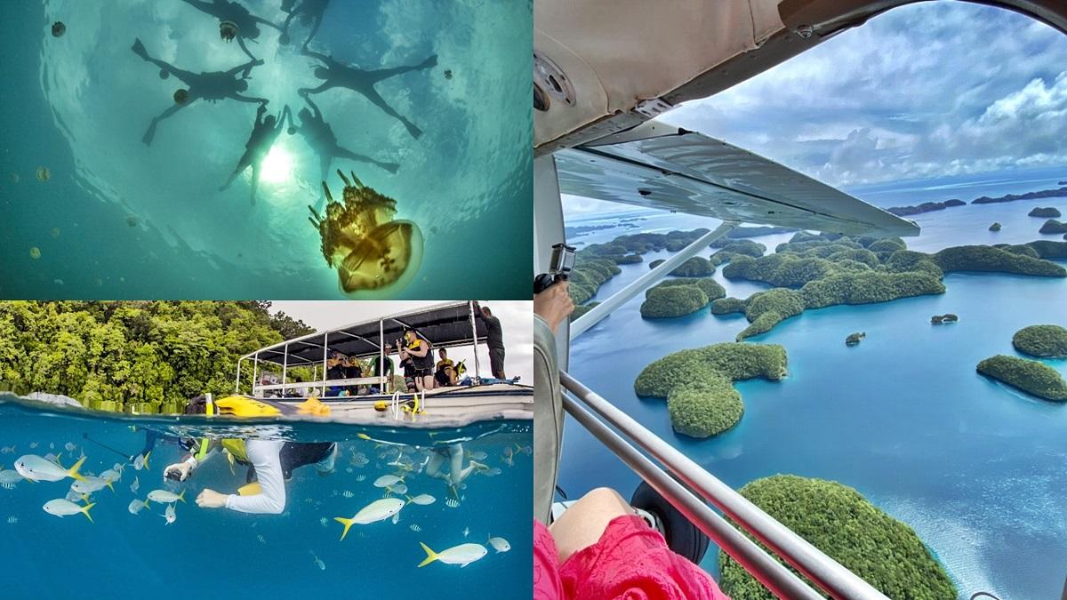 姓名有這4字同音「免費招待」玩帛琉!水母湖星球、祕境獨木舟、無人島野餐都能玩