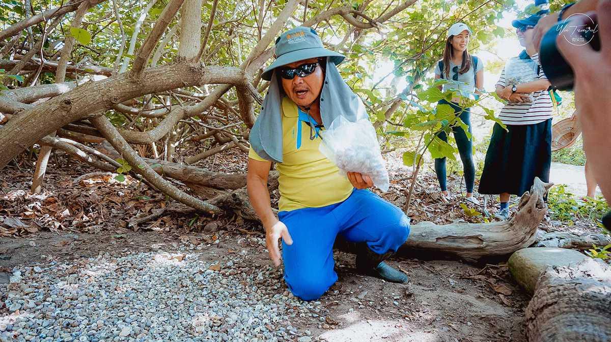 親子必衝!恆春生態2日遊7行程:打卡珊瑚礁公園、夜遊鵝鑾鼻、吃火龍果飯