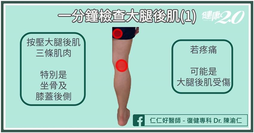 運動完大腿後側好痛?1分鐘判斷是不是肌肉拉傷!大腿後肌拉傷小心壓迫坐骨神經