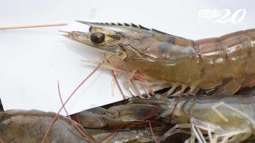 被魚鰭刺了1下,阿嬤左手發紫變黑險死 中秋烤肉處理蝦蟹要小心