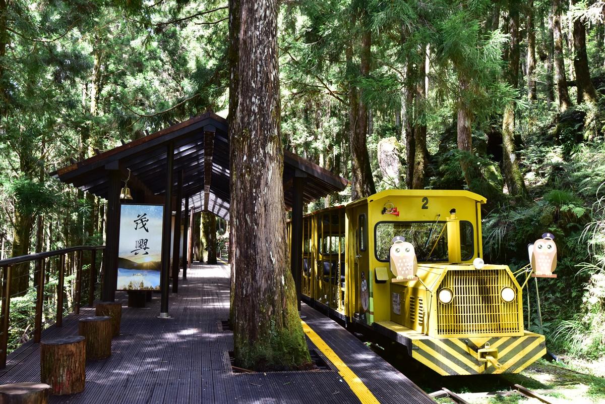全台「國家森林遊樂區」雙十連假5折入園!振興券再享買一送一、住宿折扣