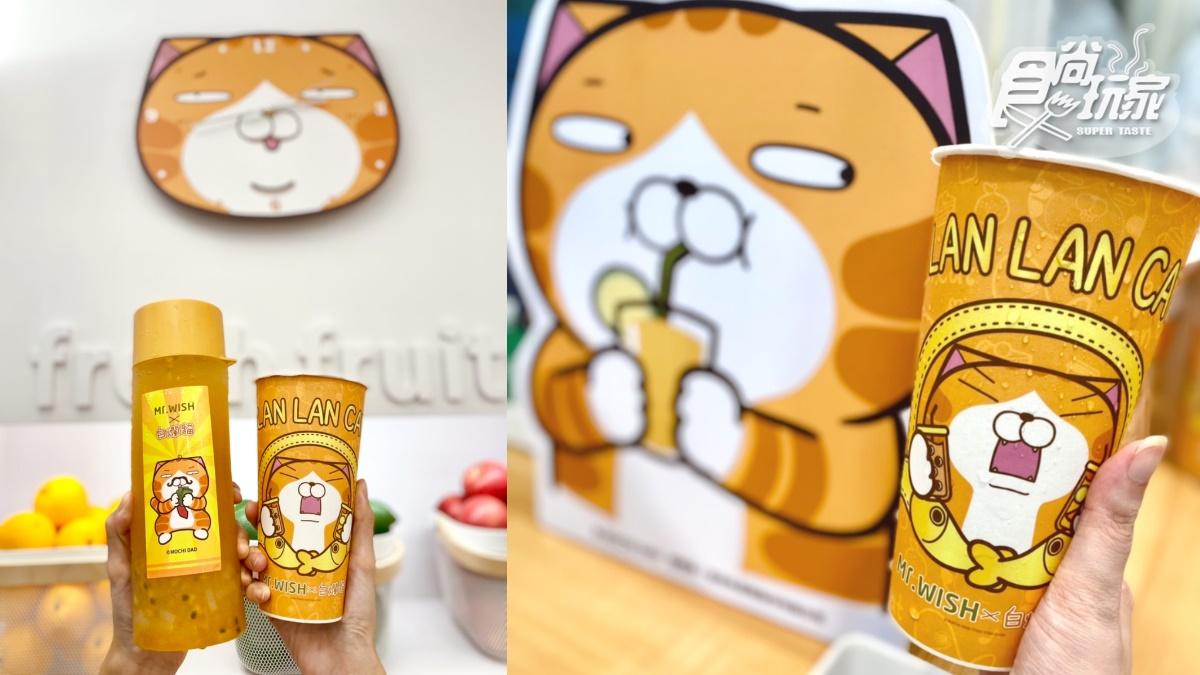 這杯爛粉要喝!「白爛貓QQ水果茶」手搖飲新登場,加送刮刮卡抽超萌周邊
