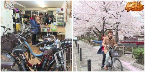 日本櫻花大戰-逐櫻の花跡 第二瓣!!