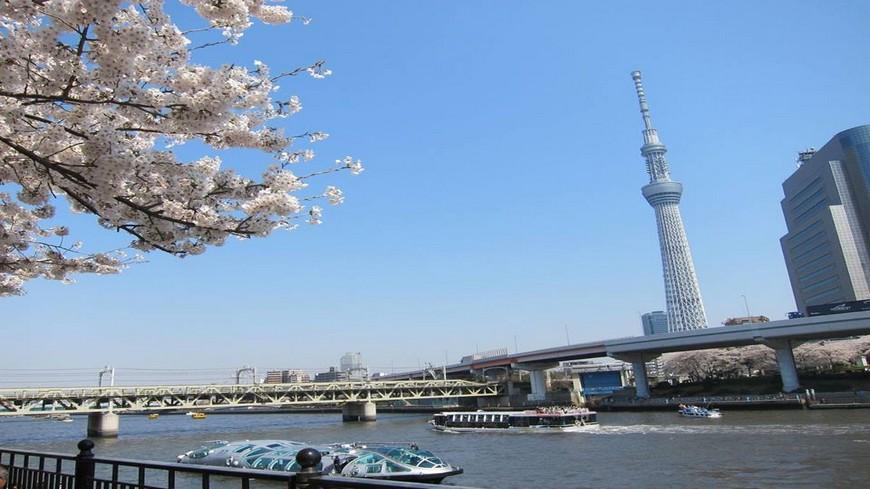 身為日本首都,求新求變永遠有最新的東西,是年輕人的潮流勝地,廉價航空也同時拓點羽田及成田,讓旅客更方便。 一次搜刮!東京最in五大景點