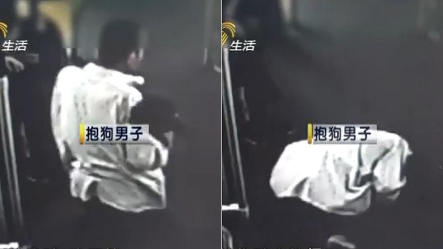 抱狗男子下跪向其他乘客道歉。圖/截取自《齊魯網》