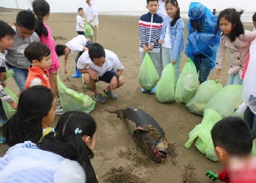 天堂沒垃圾了…小江豚纏塑袋慘死沙灘 學生痛哭親埋